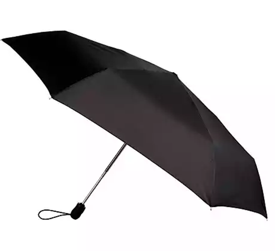 Picture of Umbrella Black Auto Open Wind Proof each