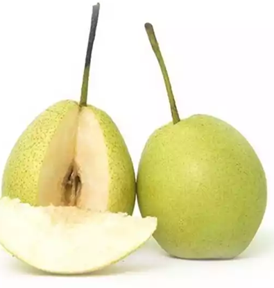 Picture of Pear (Nashpati) Net Weight (± 30 gm) 500 gm